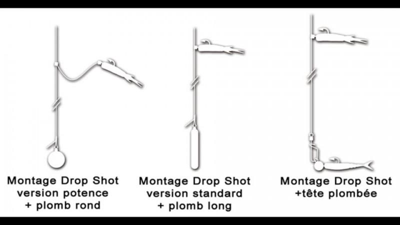 Quelques exemples de montage Drop-shot