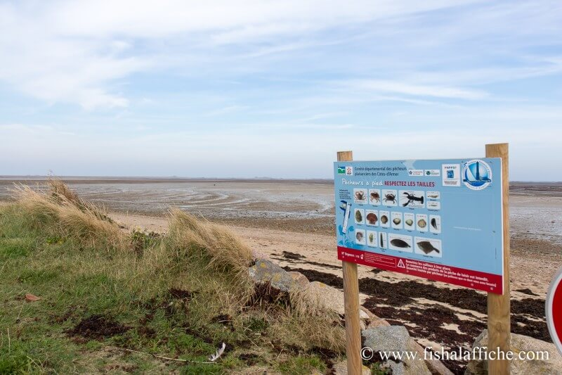 Des panneaux rappelant les grandes lignes de la règlementation sont disposés tout au long du littoral